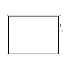 Экран (с пультом Д/У) для проекторов Deluxe DLS-ERC305W
