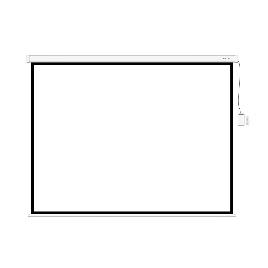 Экран (с пультом Д/У) для проекторов Deluxe DLS-ERC305х229W