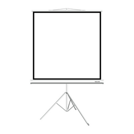 """Экран на треноге Deluxe DLS-T244W (96""""х96""""), Ø - 136"""", Раб. поверхность 236х236 см., 1:1"""